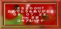 コキア25800.PNG